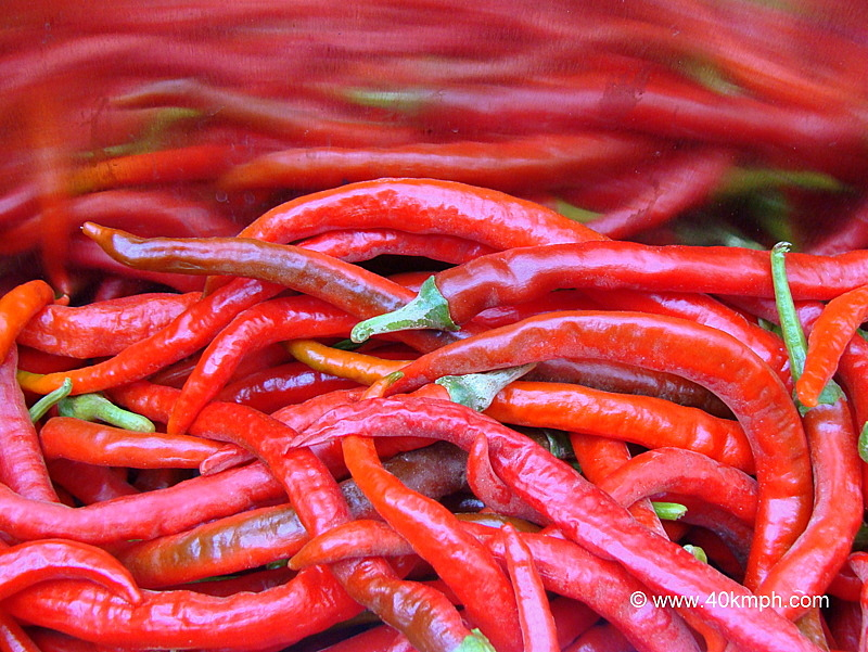 Mathania Red Chillies