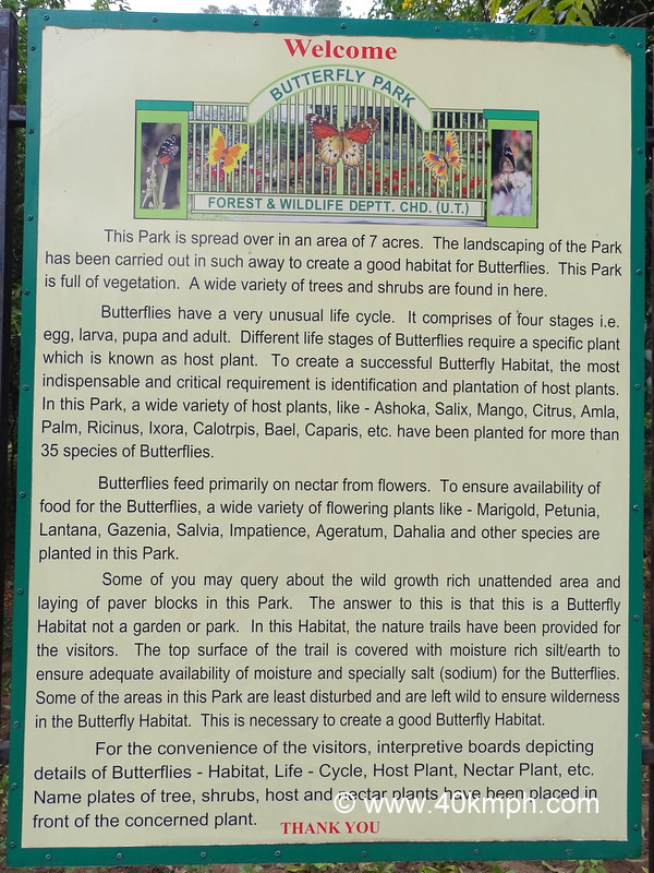 About Butterfly Park in Chandigarh