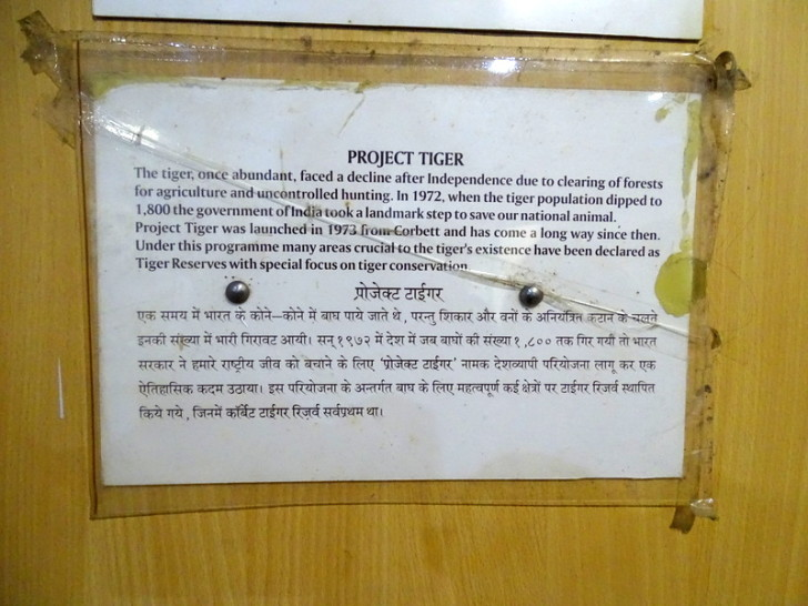 When was Project Tiger launched